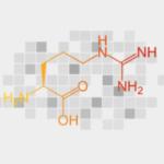 L-Arginine - ingredients of male extra