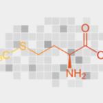 L-Methionine - ingredients of male extra