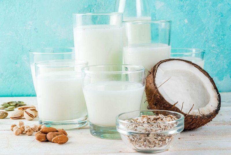 Fortified Plant Milks